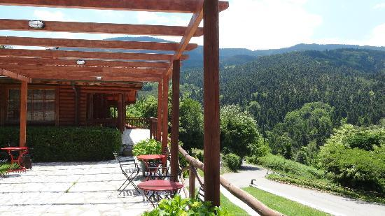 Xenios Chalets: Hotel grounds -Trails