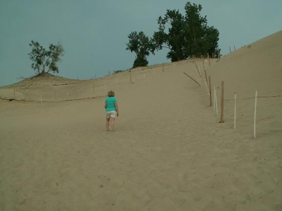 Indiana Dunes State Park: Climbing Mt. Baldy