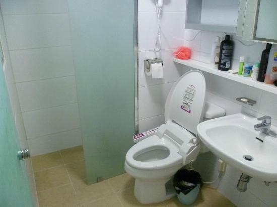 Guesthouse Phil-house : 8-female dorm bathroom