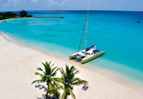 Tiami Catamaran Sailing Cruises: Beach stop fun in the sun
