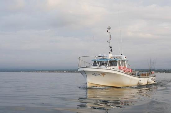 En Mer avec les Pêcheurs Côtiers : L'Omirlou