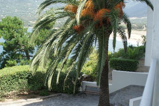 Hotel Roc e Mare : Scorcio dei Giardini hotel