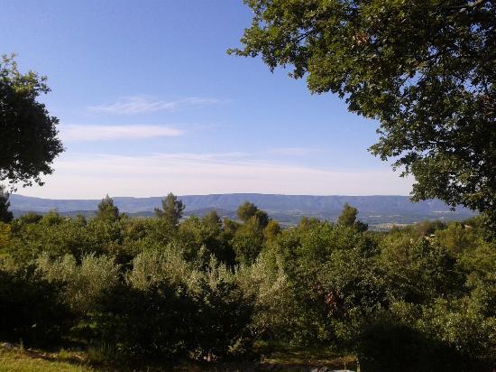 Le Mas du Loriot: View from terrace