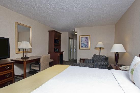 هوليداي إن شيكاجو - إلك جروف: King Room at Holiday Inn Elk Grove