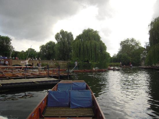 Scudamore's Punting Company: Cam river