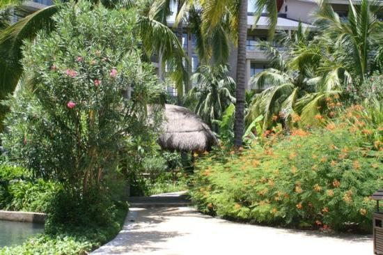 Hilton Sanya Yalong Bay Resort & Spa: Grounds were beautiful and fragrant!