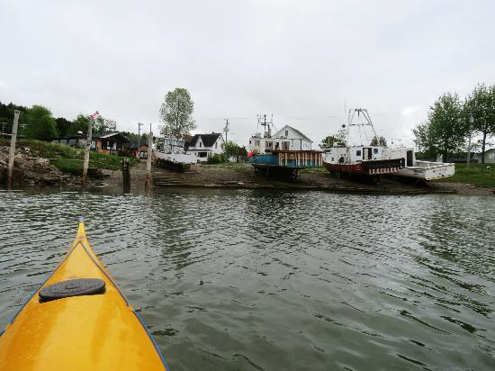 FreshAir Adventure Day Tours: View from the estuary
