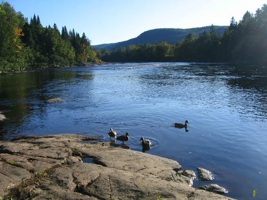Au Chant de la Riviere: Rivière Jacques-Cartier