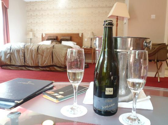 Fitzgerald's Vienna Woods Hotel: Our room and complimentary bottle of wine for our honeymoon
