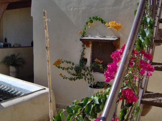 Riad Boujloud: Terrasse