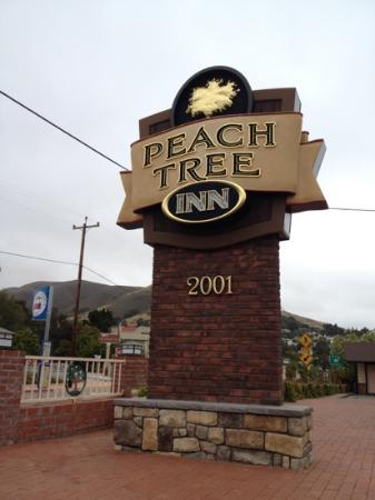 Peach Tree Inn: Right off the 101