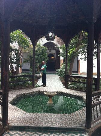 Riad Vert Marrakech: Me !!!