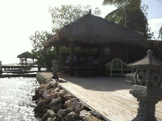 "Aruba Reef Beach Apartments: the ""hut"""