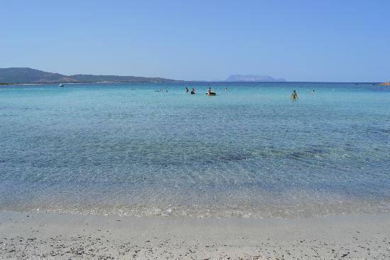 Tanaunella, Italien: spiaggia, 10 luglio h. 12.00. In barba a chi la vede piena di alghe!