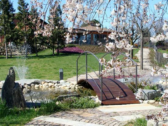 Mariano Comense, Włochy: il ristorante Croce di Malta, i fiori di pesco in primavera per nozze nel verde della brianza