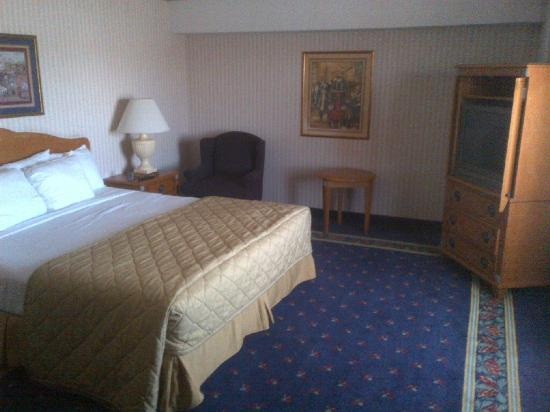 Circus Circus Reno: A typical Sky Tower room; it's a fairly typical mid-range hotel.