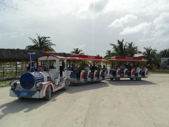 Sirena Beach : Tren que te lleva a la playa.