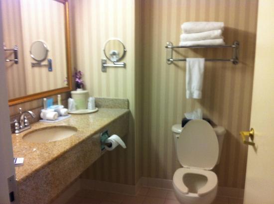 هوليداي إن إكسبريس هوتل آند سويتس إيستون: Clean Bathroom in our room