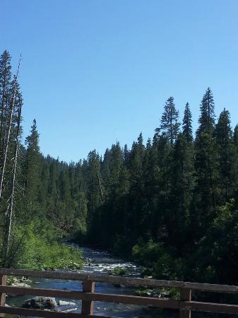 WorldMark Angels Camp : State Park