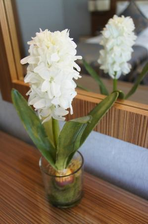 Hotel Momento: Flower in room