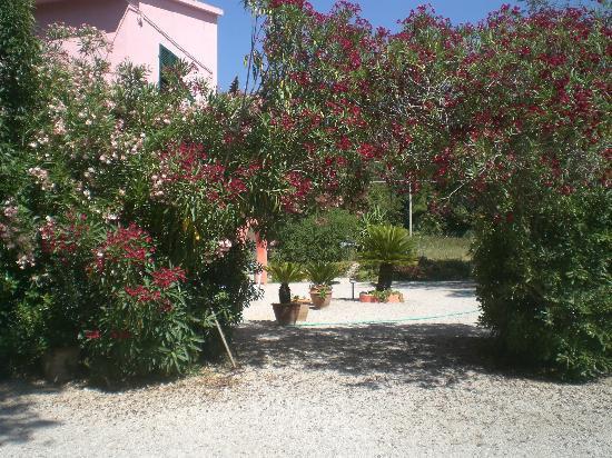 Villa Gaia: esterno