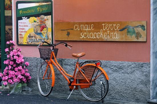 Hotel Marina Piccola: La Cinque Terre is so colorful