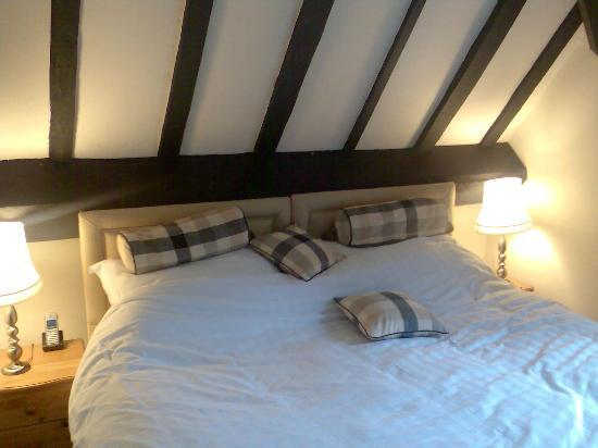 Maesmawr Hall Hotel: The bedroom in room 22