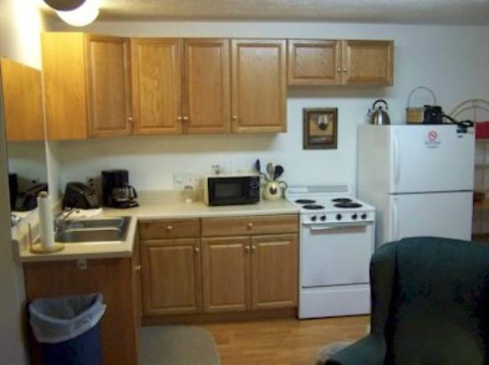 Lakeview Motel and Apartments : Kitchenette Single Unit
