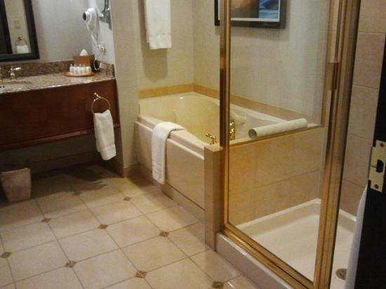 Ameristar Casino Hotel East Chicago: BATHROOM IS GREAT