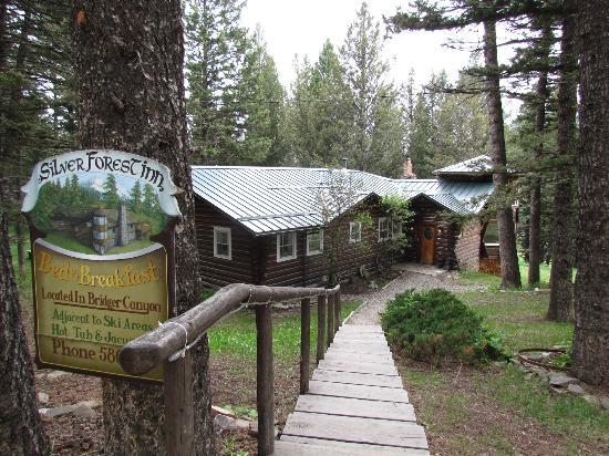 Silver Forest Inn: Entrance to the B&B