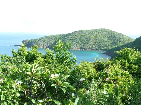Guana Island: beautiful views