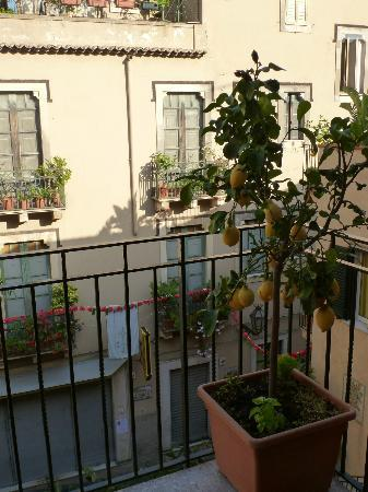 Residence degli Agrumi: View from kitchen balcony