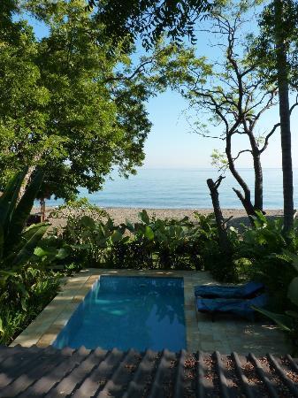 Lovina Beach Houses: piscine privée à quelques mètres de la plage