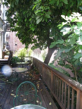 White Swan Inn: Back patio