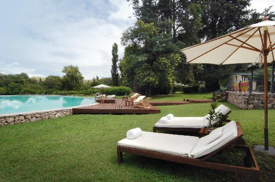 Dos Lunas Horse RIding Lodge: Relaxing at the swimming pool