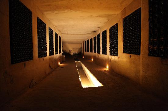 Chateau de la Riviere : underground cellar is huge and is like a maze