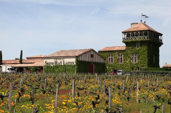 Bella Wine Tours: Chateau Smith Haut Lafitte tasting outside view