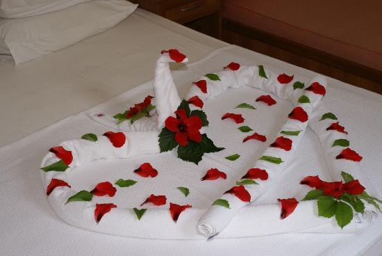 Karbel Beach Hotel: Towel Art