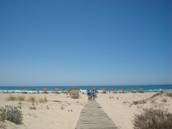 Restaurante Clandestino Zahara: Playa delante del restaurante