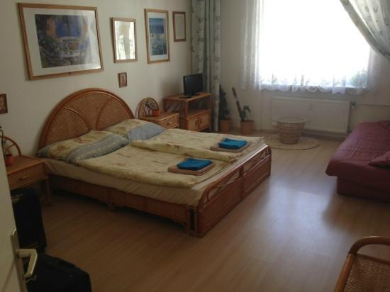 Holiday Apartments Karlovy Vary: Sleeping / living room apartment no. 8 with large bed