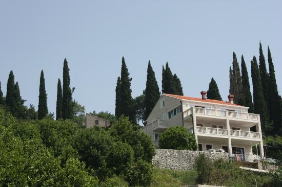 Villa Vidak Cavtat: Villa Vidak