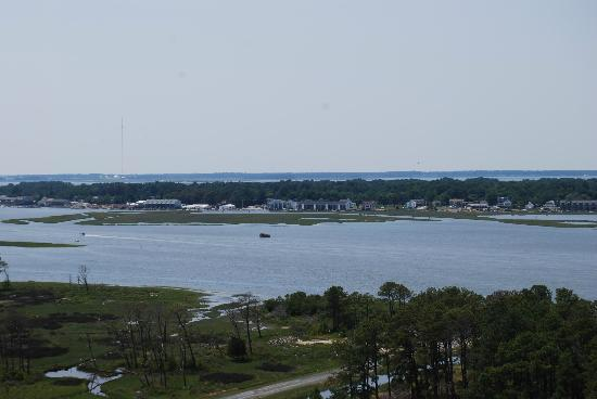 Assateague Lighthouse: View from the top!