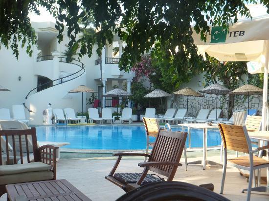 Acelya, Hotel: Pool/Bar area at the Acelya.