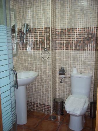 Hostal Palomares: baño