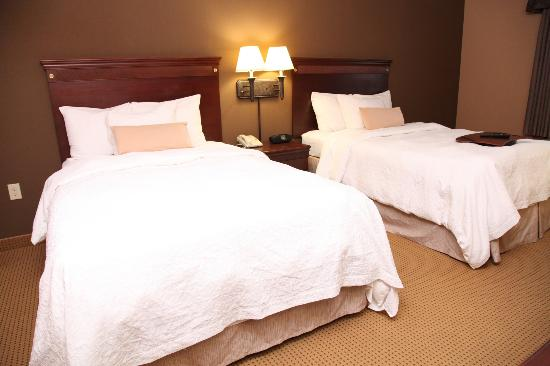 Hampton Inn and Suites Dallas - DFW Airport North / Grapevine: Guest Room
