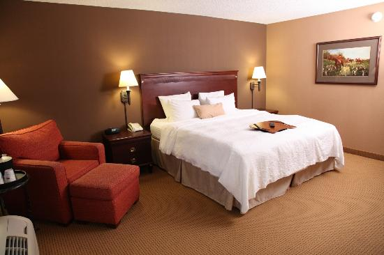 Hampton Inn and Suites Dallas - DFW Airport North / Grapevine: Guest Suite