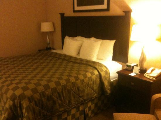 Comfort Inn & Suites Paramus : Bedroom
