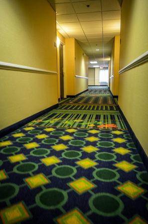 Fairfield Inn & Suites Charlottesville North: Hallways