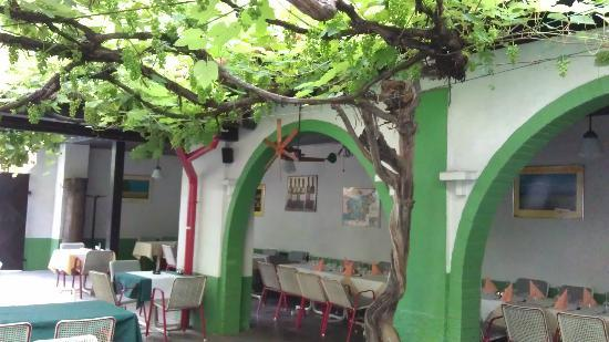 Pri Mraku Guesthouse: Dining area under the vine arbour in summer