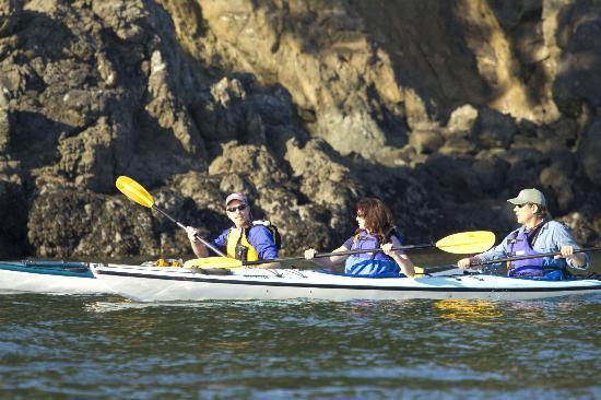 Reviews Of Kayak Tours San Juan Islands Washington